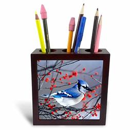 3dRose Danita Delimont - Birds - Blue Jay in Winterberry Bus